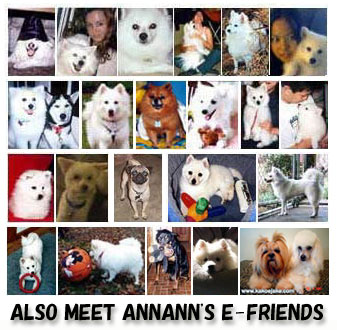 ANNANN's E-Friends