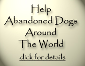Help Abandoned Dogs Around The World